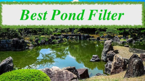 best pond filter uk reviews