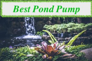 best pond pump uk reviews