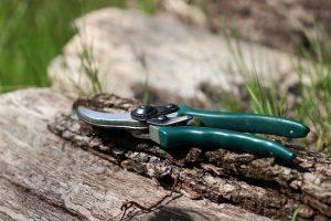best garden shears uk